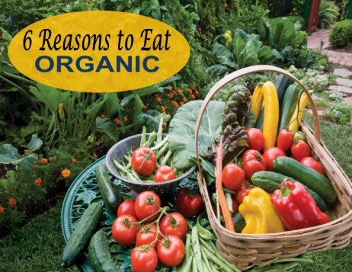 6 Reasons Why To Eat Organic
