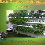 DIY Outdoor Hydroponic Grow for beginners