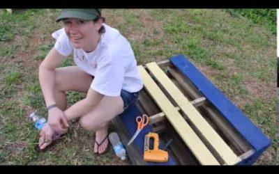 Pallet Garden – Vegetable Garden! DIY This Spring 2014