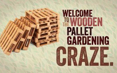 Wooden Pallet Gardening Trend